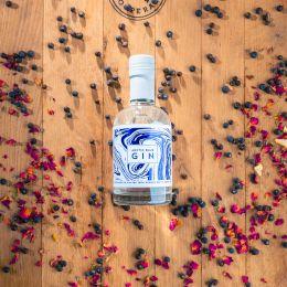 Tuotekuva Arctic Blue Gin 1